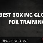 Best Boxing Gloves for Training 2021 –  June Update (Best Reviews)