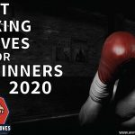 Best Boxing Gloves for Beginners | Reviewed - May 2021]