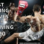 Best Boxing Gloves for Training 2021 –  May Update (Best Reviews)