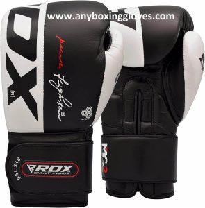 Best Boxing Gloves for Beginners