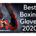 Best Boxing Gloves 2021 - [Buying Guide] - May Update