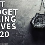 BEST BUDGET BOXING GLOVES 2021 - [ May Update ]