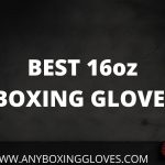 BEST 16oz BOXING GLOVES 2021 [June Update]
