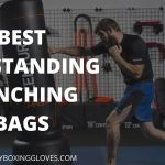 Best Freestanding Punching Bags 2021 | [ Updated - June ]