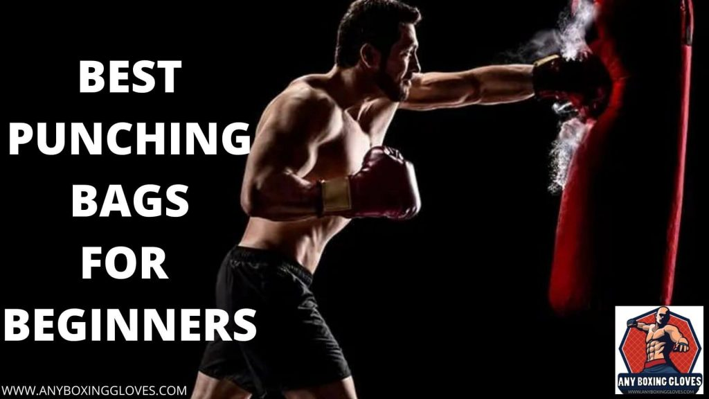 best punching bags for beginners