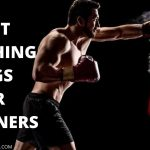 Best Punching Bags for Beginners 2021 | [ Updated - June ]